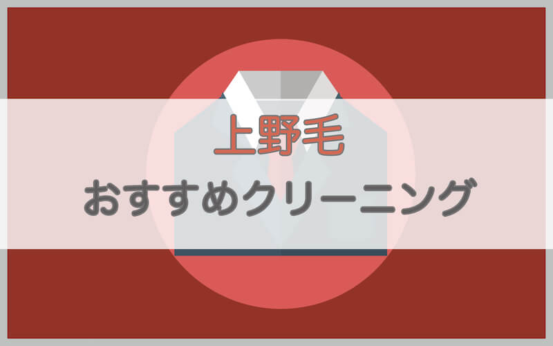上野毛のおすすめクリーニング